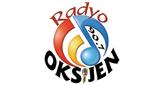 Radyo Oksijen