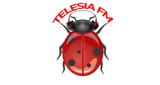 Radio Telesia