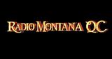 Montana QC