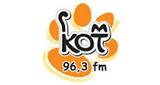 Радио Кот ФМ