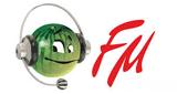 Камышин FM
