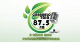 Rádio Carmelotaia