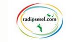 Radiosesel
