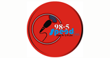 ASKiNG Radio SPEED FM