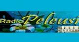 Radio Peleusi