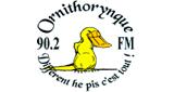 Ornithorynque