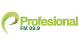 Radio Profesional