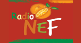 Radio NeF