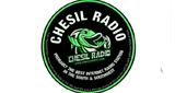 Chesil Radio
