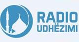 Radio Udhëzimi