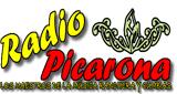 Picarona Panguipulli