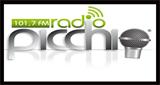 Radio Picchio FM