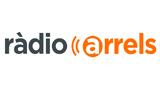 Radio Arrels FM