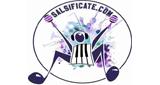 SALSIFICATE.COM