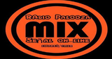 Radio Palooza