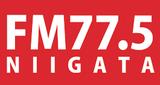 FM Niigata