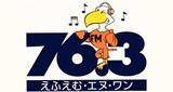 FM-N1