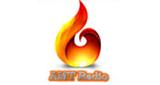 AMT Radio GR