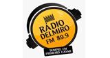 Rádio Delmiro