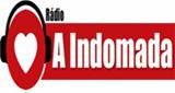 Rádio Web A Indomada