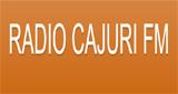 Rádio Cajuri FM