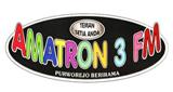 Amatron 3 FM