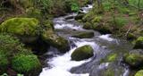 Ondas del río Guarapas