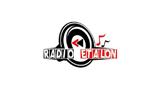 Radio Etalon