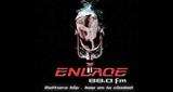 Enlace FM
