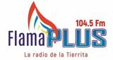Flama Plus