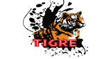 TIGRE 102.1 FM