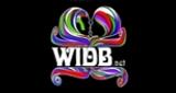 WIDB: The Revolution