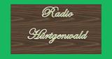 Radio Hürtgenwald