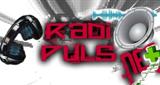 Radio Pulso Net