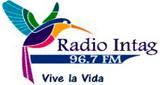 Radio Intag