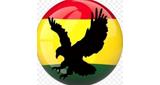 GTOP Radio (Ghana Top Radio)