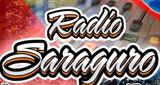 Radio Municipal Saraguro