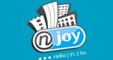 Radio NJOY 91.3
