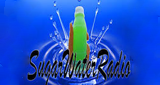 Sugar Water Radio