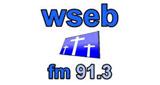WSEB 91.3 FM