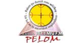 Radio Pelom