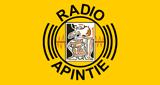 RADIO APINTIE SURINAME