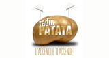 RADIO Patata