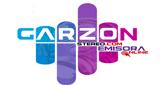 Garzón Stereo
