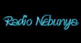 Radio Nebunya
