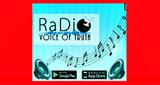 Ra-Dio Voice Of Truth(Christian Radio)