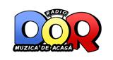 Radio Dor