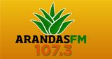 Arandas 107.3 FM