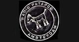 Radio Patapoe FM