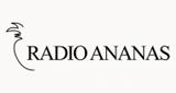 Radio Ananas